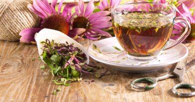 Trei plante pentru stimularea sistemului imunitar în perioada rece a anului