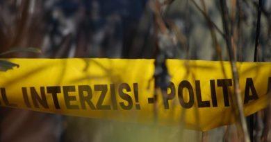 Un bărbat din raionul Fălești a murit, după ce un copac a căzut peste el