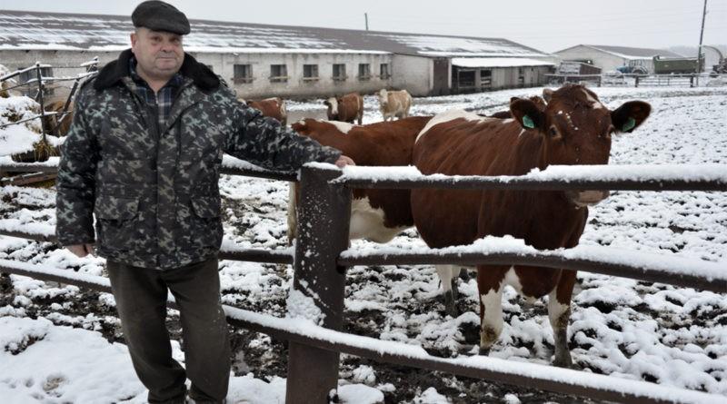 ANSA: Recomandări pentru crescătorii de animale în perioada de iarnă