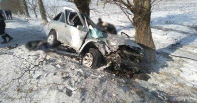 Два человека погибли, а двое других попали в больницу - жуткая авария в Бричанах 4 11.05.2021