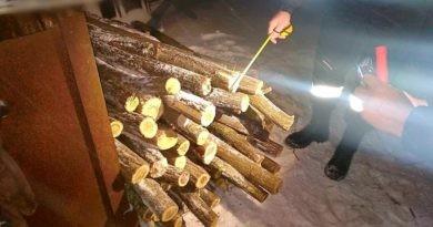 /FOTO/ Un bărbat din raionul Drochia a fost prin cu lemne furate la Dondușeni