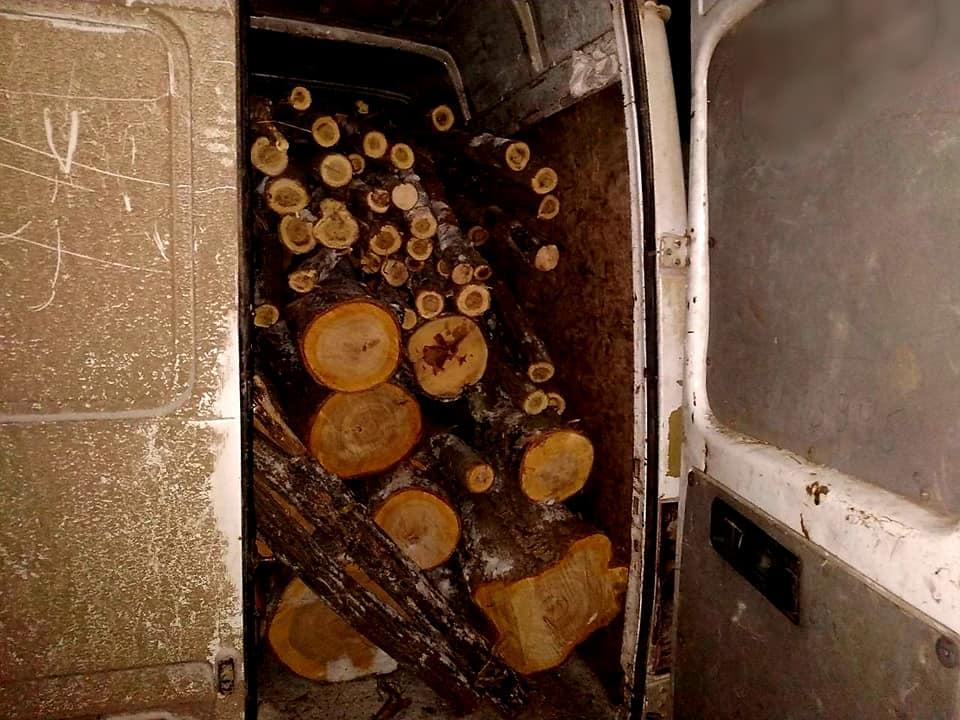 /FOTO/ Un bărbat din raionul Drochia a fost prins cu lemne furate la Dondușeni 1 14.04.2021