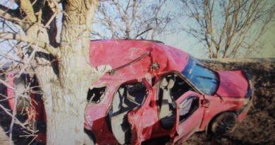 /FOTO/ Grav accident în raionul Fălești. Un bărbat în stare de ebrietate a ajuns cu mașina într-un copac, doi pasageri în stare gravă la spital