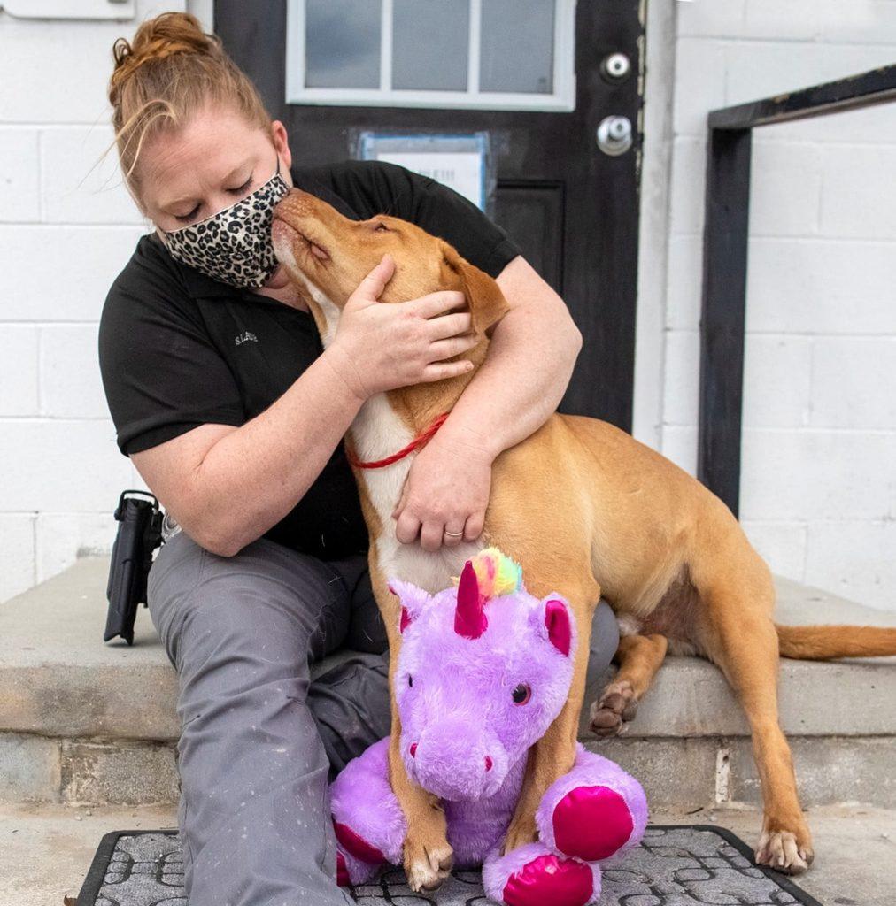 /FOTO/ Un câine fără stăpân din SUA a primit cadou un unicorn de pluș pe care îl furase de cinci ori dintr-un magazin 2 18.04.2021