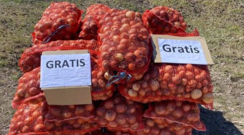 Un fermier din raionul Ocnița oferă ceapă gratuit pentru că nu are unde să o vândă
