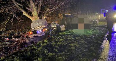 Foto В Ниспоренском районе в ДТП погибли два 16-летних подростка 3 24.07.2021