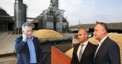 Депутат Игорь Гросу: Додон через Войку и человека Плахотнюка продал пшеницу из госрезерва на 12 млн леев 3 14.04.2021