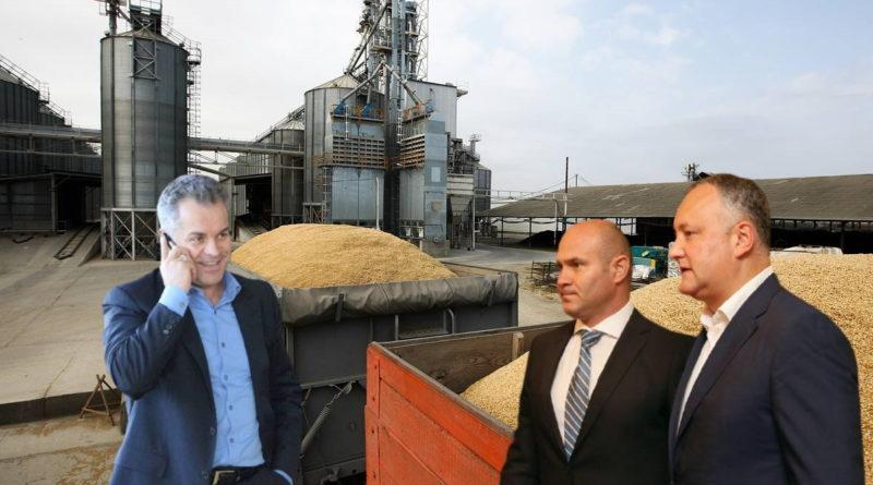 Депутат Игорь Гросу: Додон через Войку и человека Плахотнюка продал пшеницу из госрезерва на 12 млн леев 10 14.04.2021