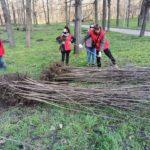 В Кишиневе возобновлена кампания по посадке деревьев 5 12.04.2021