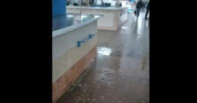 /VIDEO/ În pavilionul pieței centrale din municipiul Bălți a plouat ca afară