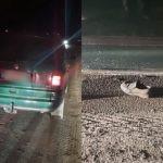 Accident la Sângerei. Un bărbat din raionul Glodeni a fost tamponat de o mașină și a decedat pe patul de spital