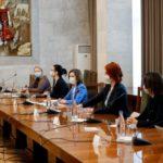 Foto Майя Санду встретилась с членами делегации Парламентской ассамблеи Совета Европы 6 13.06.2021