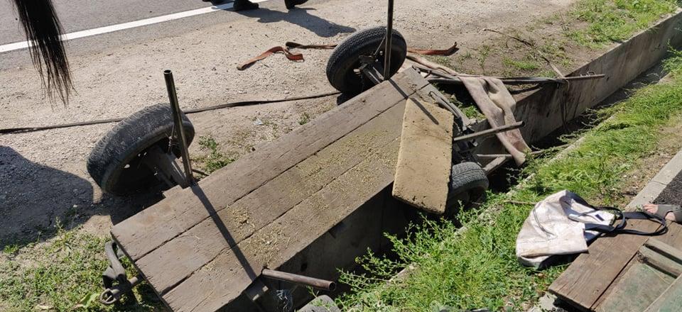 Foto /VIDEO/ Cal prăbușit într-un șanț de pe marginea carosabilului în raionul Fălești. A fost nevoie de intervenția salvatorilor 4 26.10.2021