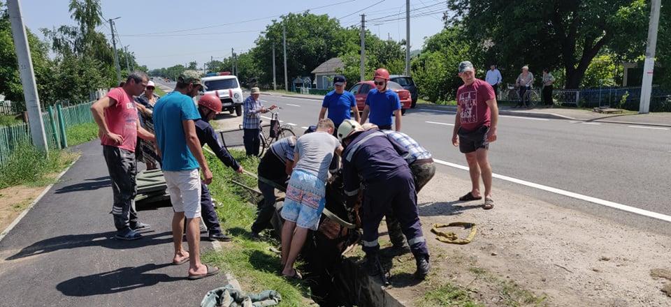 Foto /VIDEO/ Cal prăbușit într-un șanț de pe marginea carosabilului în raionul Fălești. A fost nevoie de intervenția salvatorilor 2 26.10.2021