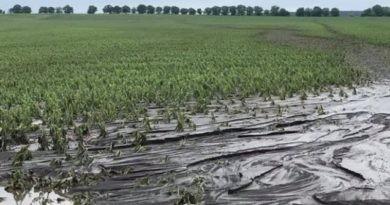 Ploile abundente au făcut ravagii în raioanele Fălești și Soroca