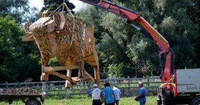 """/FOTO/ Un zimbru uriaș din lemn a fost instalat pe teritoriul rezervației naturale """"Pădurea Domnească"""""""