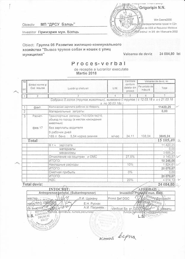 Foto Строительство бельцкого приюта для собак по цене 450 евро за кв. метр: новое расследование 20 17.10.2021