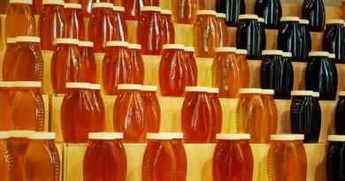 Foto Exportul de miere în Uniunea Europeană este în scădere 1 21.09.2021