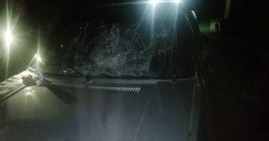 O femeie din raionul Dondușeni a murit, după ce a fost lovită de un automobil la volanul căruia se afla un polițist