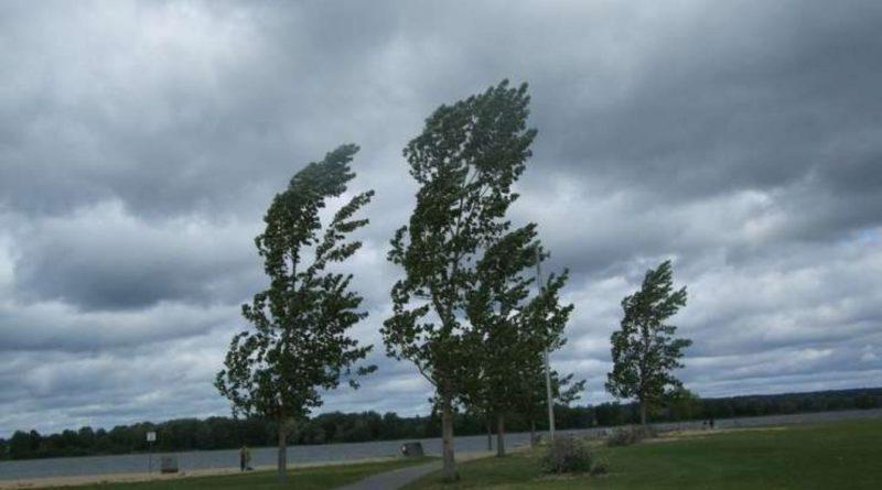 Atenție! Meteorologii au emis Cod Galben de vânt pe întreg teritoriul țării