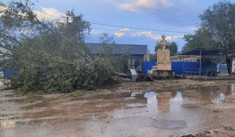 Copaci prăbușiți în mai multe localități din nordul țării în urma intemperiilor