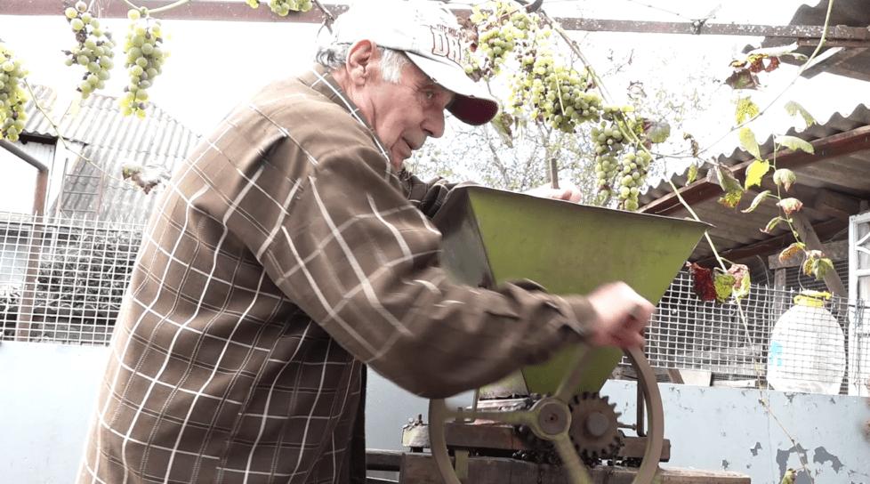 /VIDEO/ La Bilicenii Vechi din raionul Sîngerei vinul se face cu tradiție
