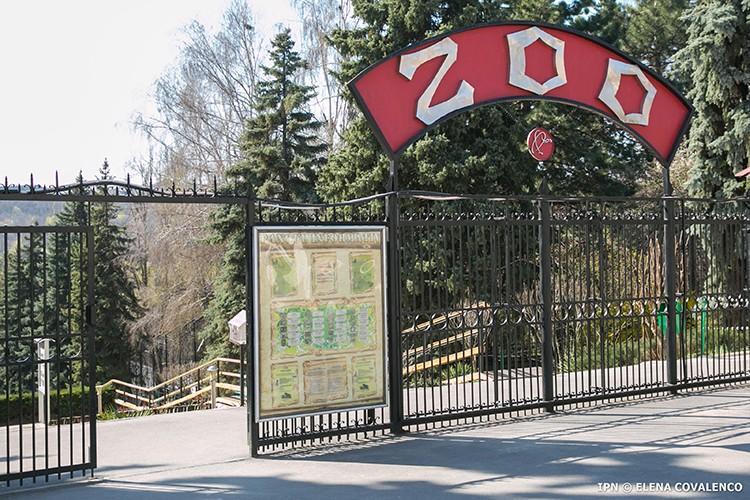 Foto S-au răzgândit. Grădina Zoologică din Chișinău rămâne deschisă pentru vizitatori 1 17.10.2021