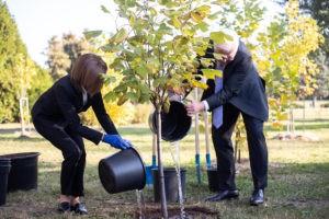 Foto /FOTO/ Maia Sandu a sădit, impreună cu președintele Germaniei, doi arbori de lalea, la Grădina Botanică 2 27.10.2021