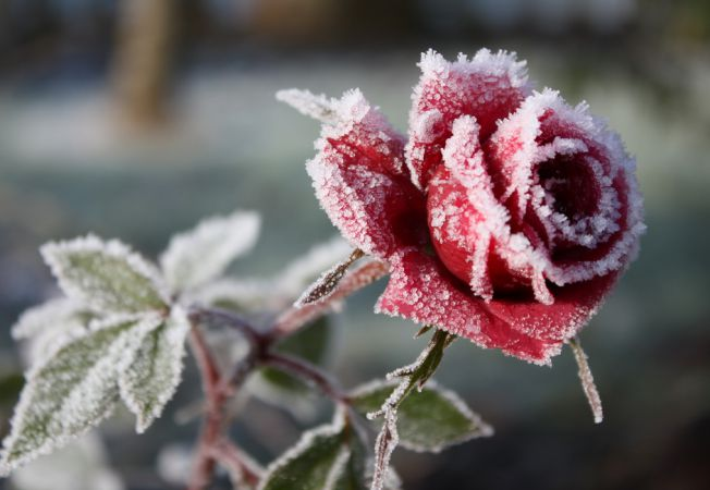 Foto /VIN ÎNGHEȚURILE/ La începutul săptămânii viitoare, temperatura ar putea coborî până la -3°C 1 17.10.2021