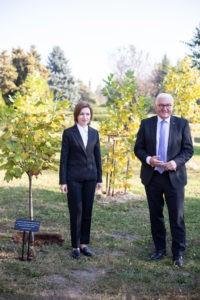 Foto /FOTO/ Maia Sandu a sădit, impreună cu președintele Germaniei, doi arbori de lalea, la Grădina Botanică 5 27.10.2021