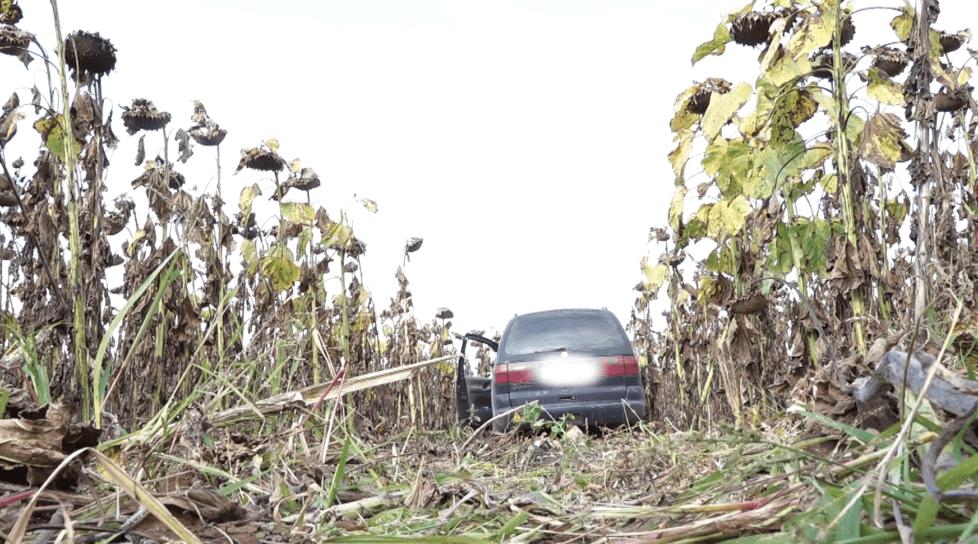 /VIDEO/ Un automobil cu mii de pachete de țigări de contrabandă depistat într-un lan din Glodeni